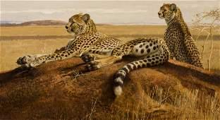 Cheetahs on a Termite Hill by Bob Kuhn