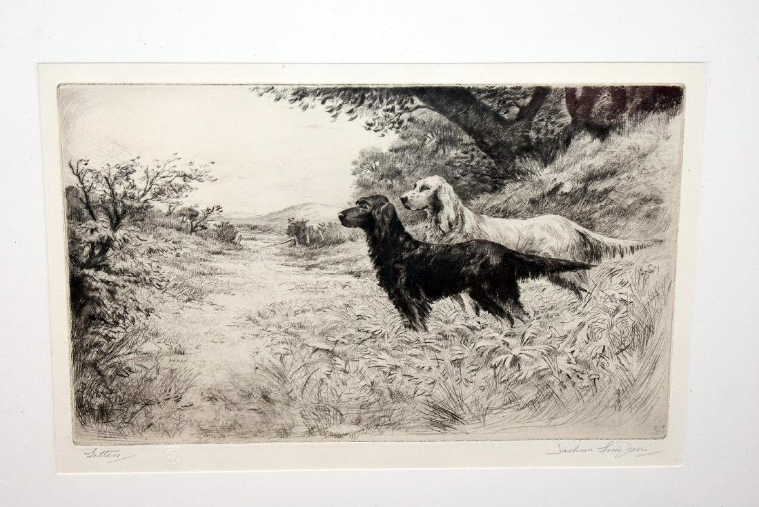 Two Engravings of Setters - 2