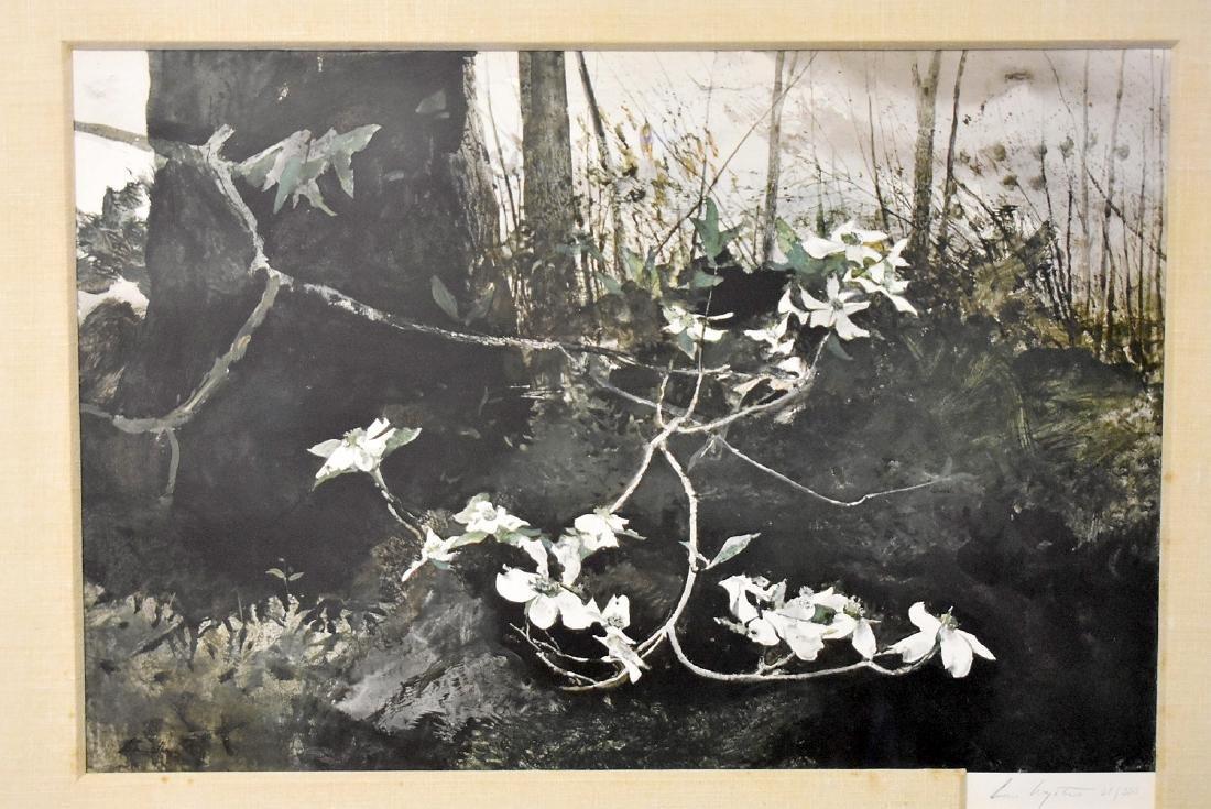 Signed & Numbered Andrew Wyeth Print, Dogwood - 2