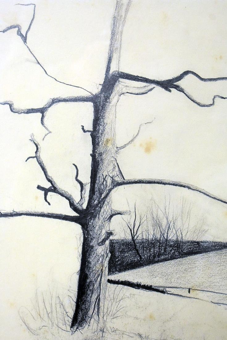 James Lynch. Charcoal/Paper, Landscape with Tree - 2