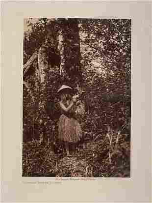 Edward Curtis. Photogravure, Quinault Berry Picker