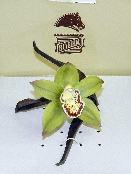 Boehm Porcelain Orchid - 2