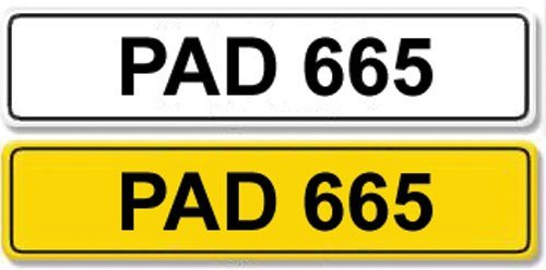 2008: Registration Number PAD 665