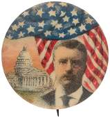 RARE ROOSEVELT US CAPITOL PORTRAIT BUTTON UNLISTED IN