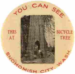C. 1913 FAMOUS GIANT SNOHOMISH CITY, WASHINGTON