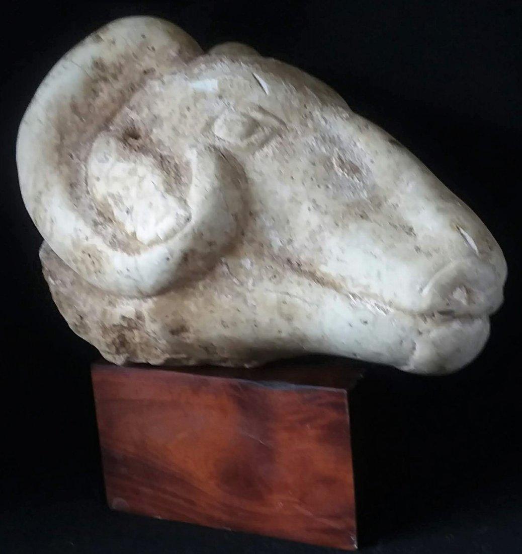 Western Asiatic Life Size Rams Head