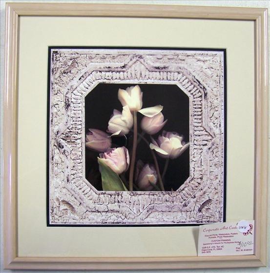 1088: Tulips Open Edition