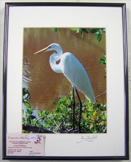 1097: Long Legs Egret By Nichols