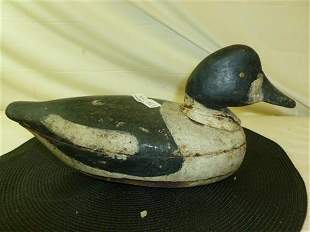 Antique tack EYE Bufflehead working Decoy-12 1/2 long