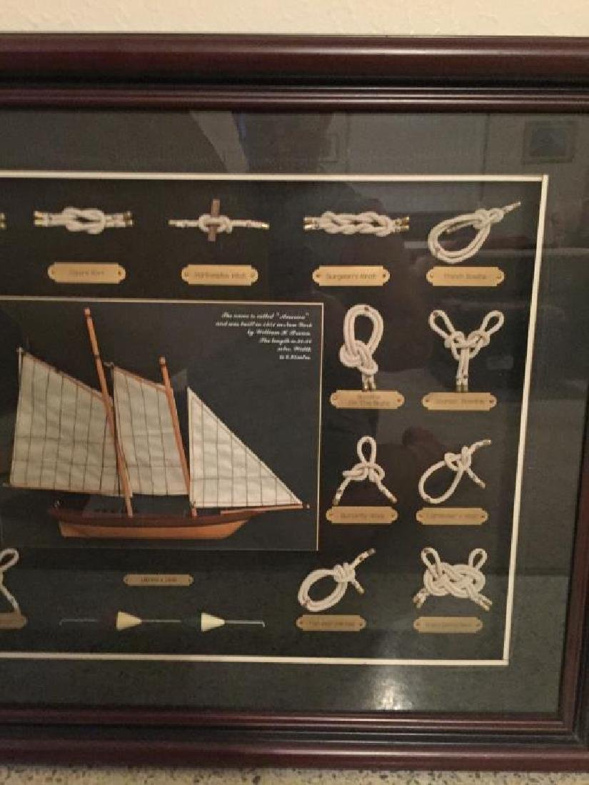 AMERICA 1851 Shadowbox Frame of Nautical Knots - 4