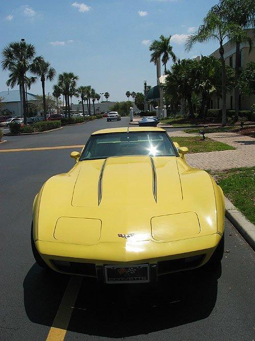 3131: Corvette T-top classic, 1979, 33K miles
