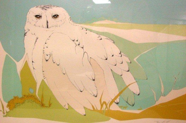 22: Framed under Glass Owl Signed Print Peter Parnall - 2