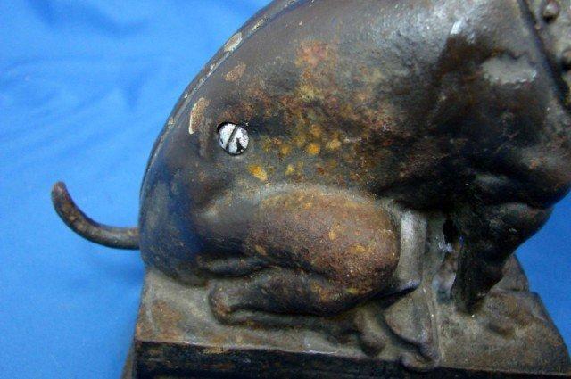 49: Antique Cast Iron Bull Dog Bank - 2