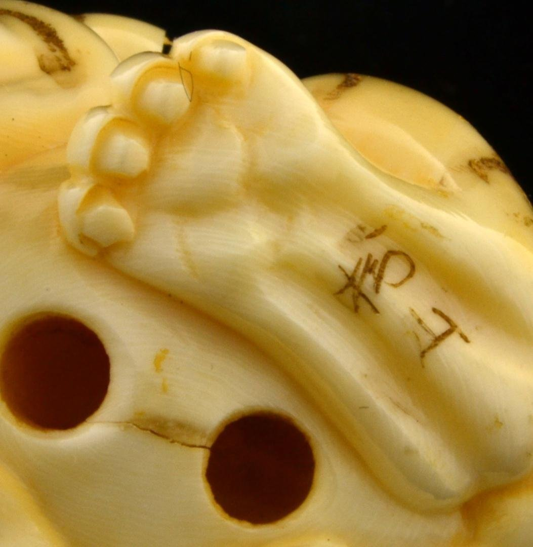 151: Signed Japanese Ivory Netsuke Crouching Tiger - 7