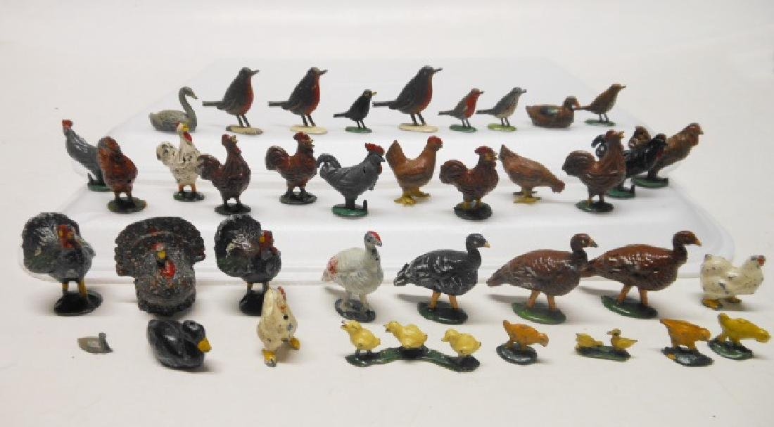 Birds and Poultry Assortment