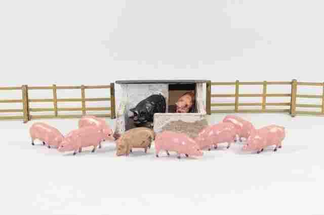 British Hollowcast Pig Farm