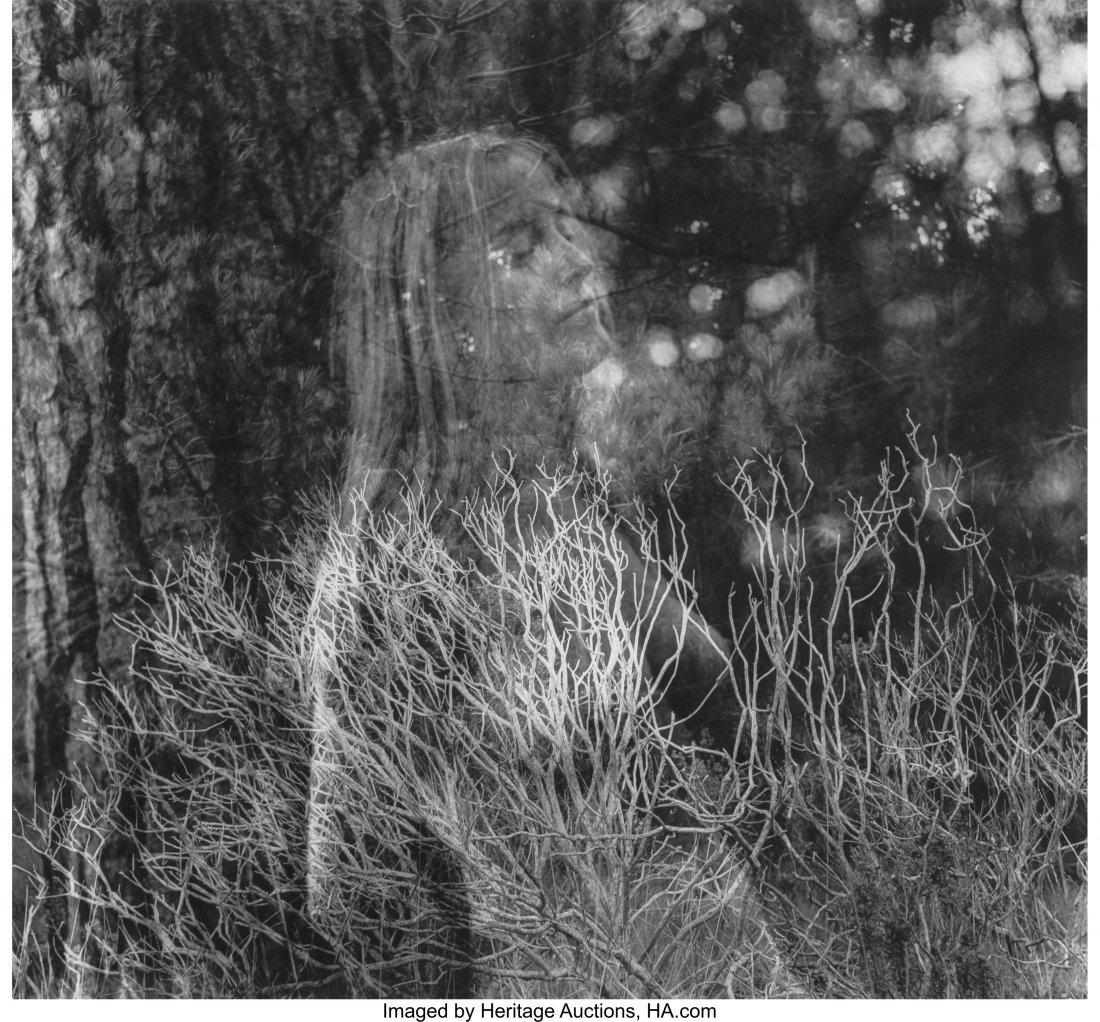 73204: Imogen Cunningham (American, 1883-1976) Dream Wa