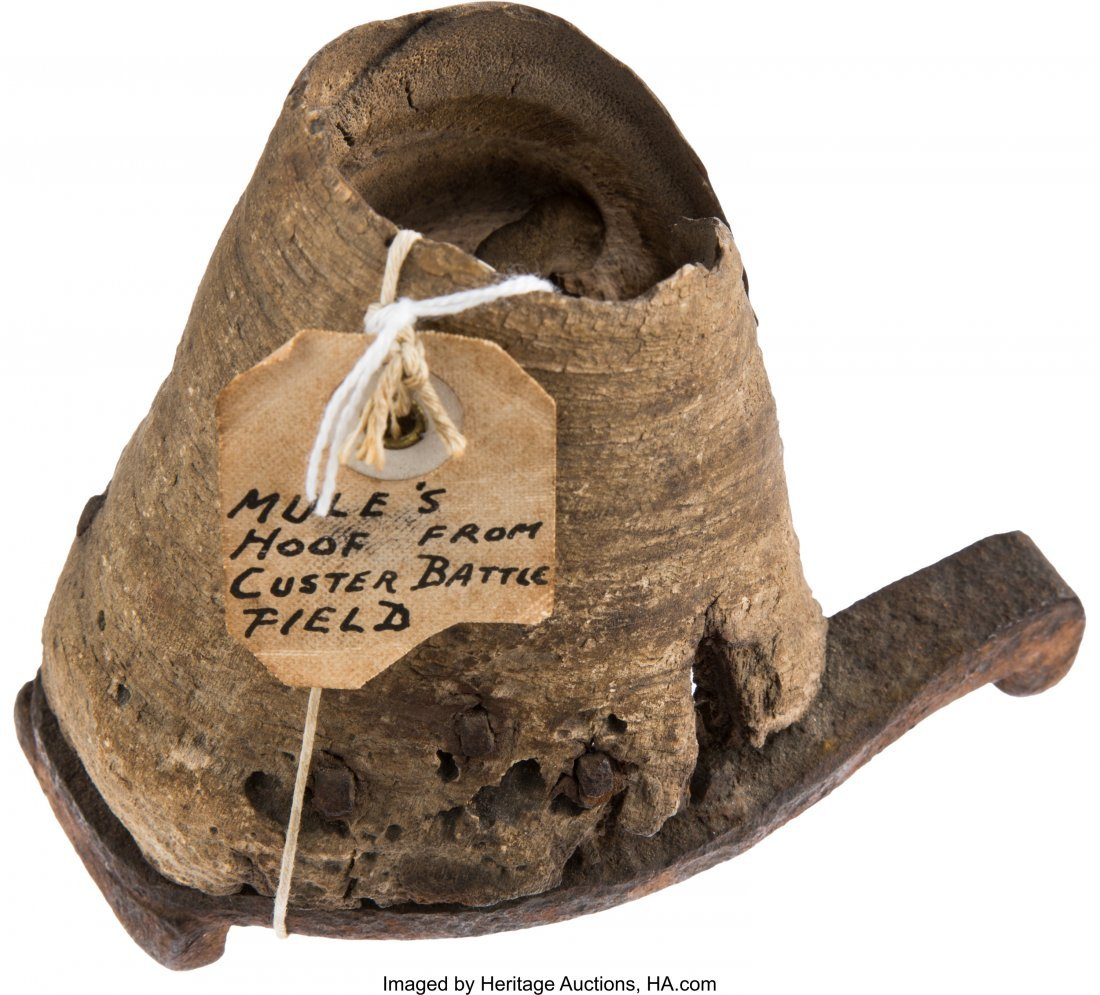 43257: US 7th Cavalry Mule Hoof and Iron Shoe with Old