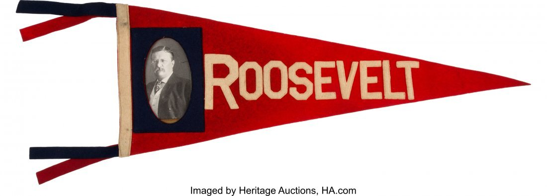 43471: Theodore Roosevelt: Red, White and Blue Portrait