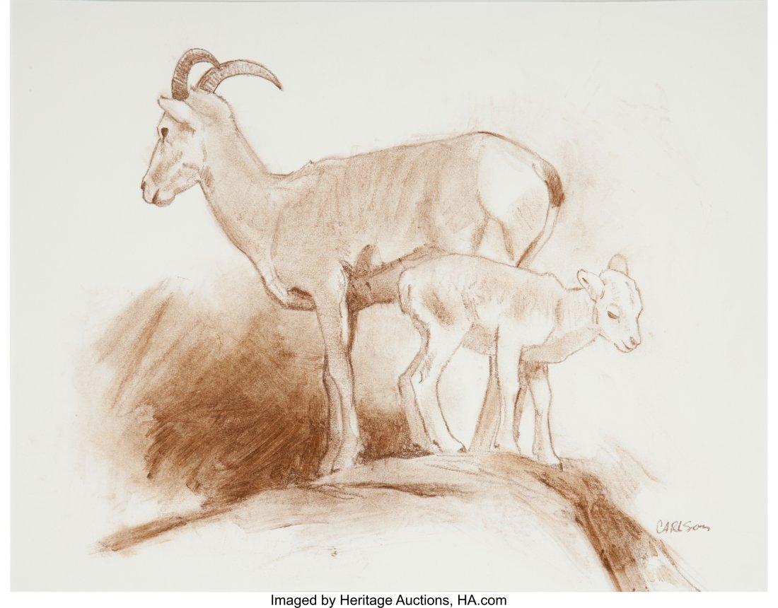 63023: Ken Carlson (American, b. 1937) Bighorn Sheep (t