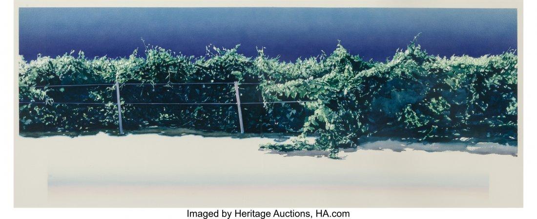 63853: Marianne Boers (American, 1945-1984) Vineyard Wa
