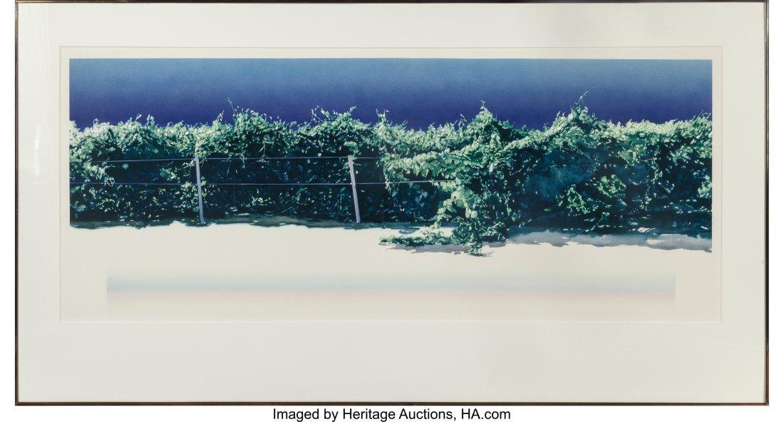 63853: Marianne Boers (American, 1945-1984) Vineyard Wa - 2