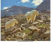68091 Tucker Smith American b 1940 Glacier Goats