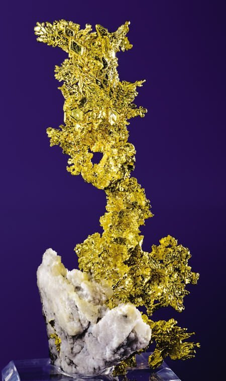 38070: CRYSTALLIZED NATIVE GOLD - THE ?COBRA?