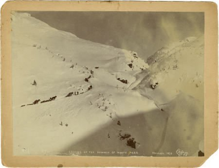 43464: Photograph: Gold Miners Looking up the Summit at