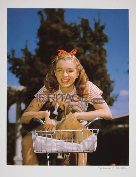46010: Marilyn Monroe Puppy in Basket Limited Edition D