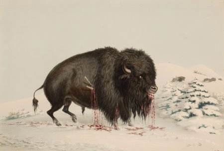 70004: GEORGE CATLIN (American, 1796-1872) North Americ