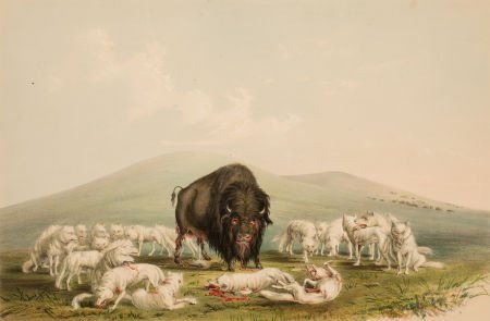 70005: GEORGE CATLIN (American, 1796-1872) North Americ