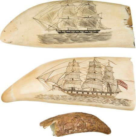 50032: Lot of Three Scrimshawed Whale Teeth.