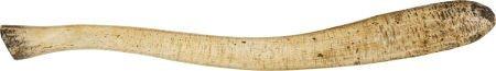 50040: 19th Century Walrus Oosik.