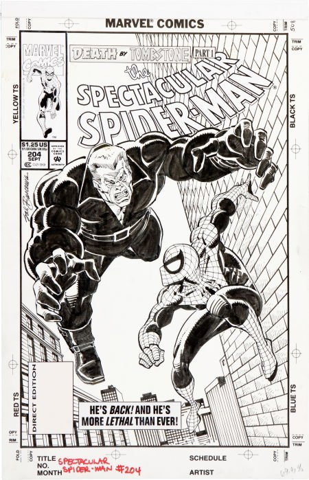 92055: Sal Buscema The Spectacular Spider-Man #204 Tomb