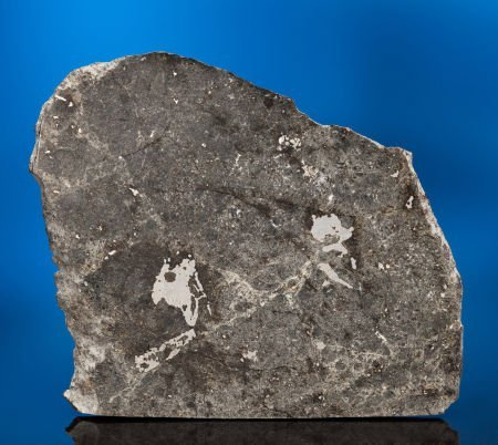 49007: ENSISHEIM - THE METEORITE THAT DISCOVERED EARTH