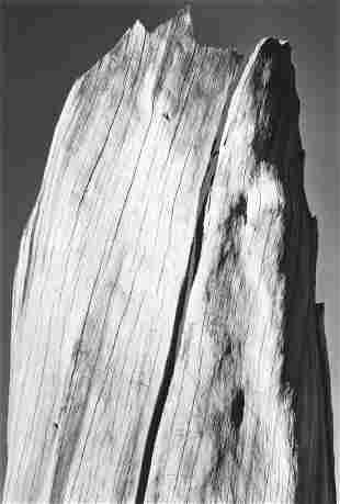 74084: ANSEL ADAMS (American, 1902-1984) Portfolio V (T