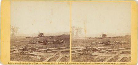 47019: Stereoview of the Dead at Antietam.