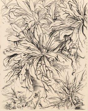 George Grosz (1893-1959) Untitled, 1937 Ink On P