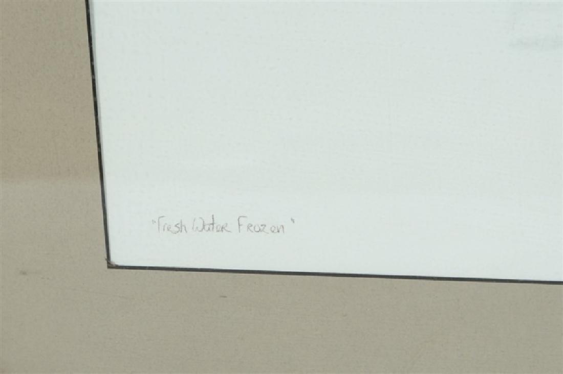 "Sally Gauger Jensen, ""Fresh Water Frozen"" - 5"