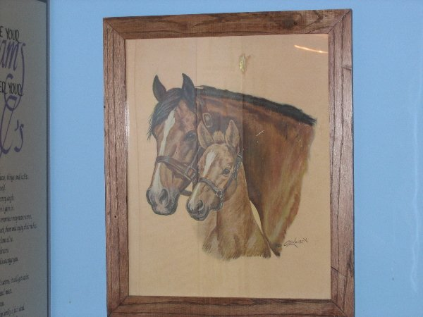 6: Horse Picture