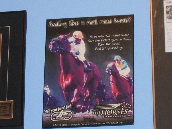 10: Horses at Stampede Park