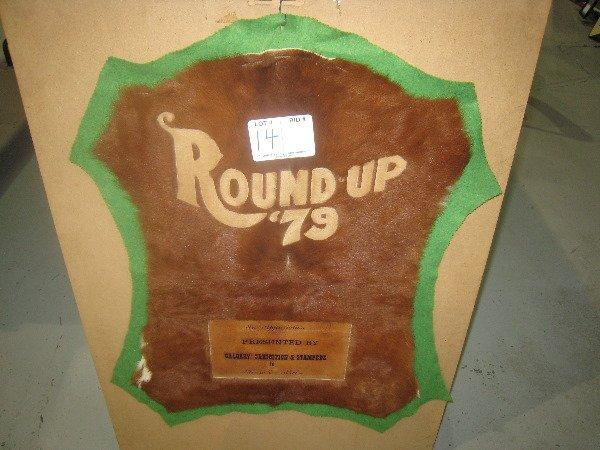 14: Round- Up Skink