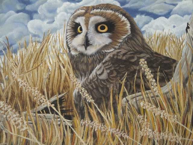 8: OIL ON CANVAS PAINTING OF OWL