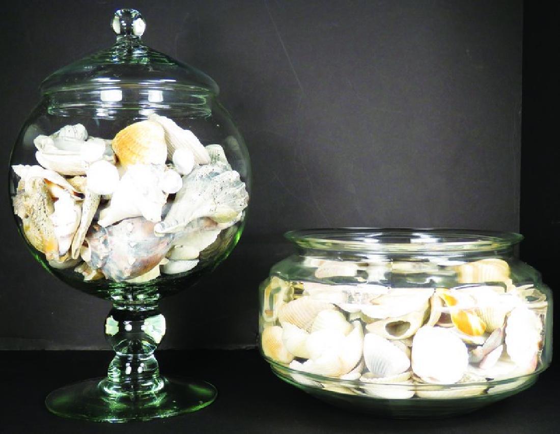 Lidded Glass Jar and Glass Terrarium