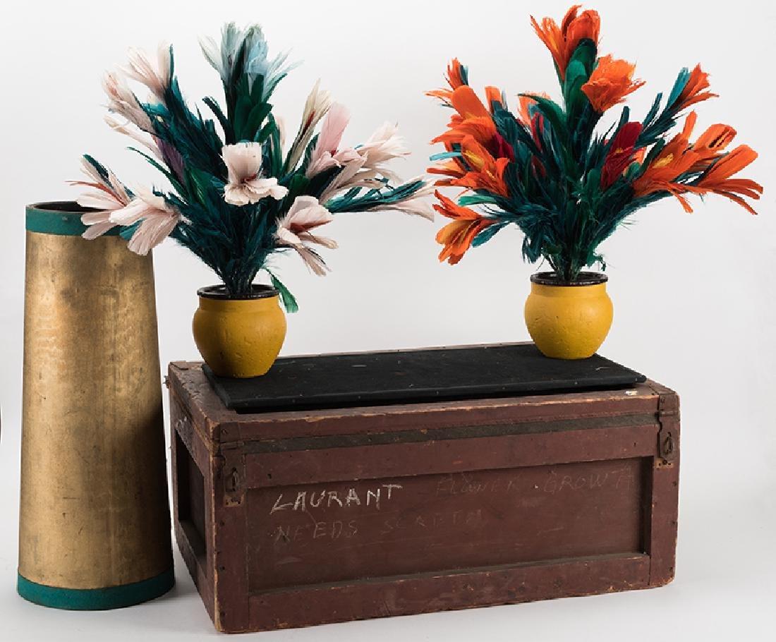 Eugene Laurant's Kellar Flower Growth.
