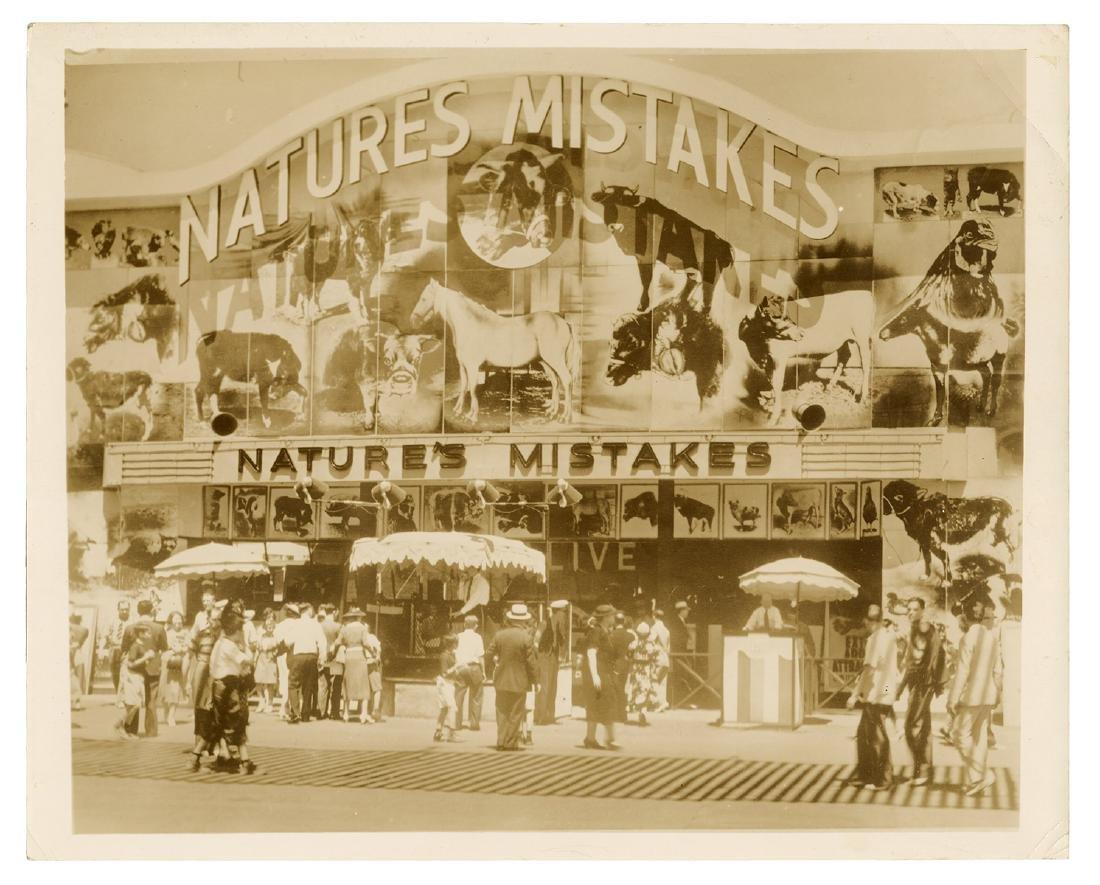 Nature's Mistakes. 1939 New York World's Fair.
