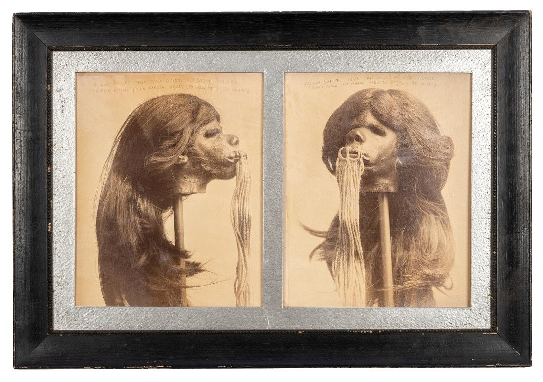 Photographs of a Shrunken Head.