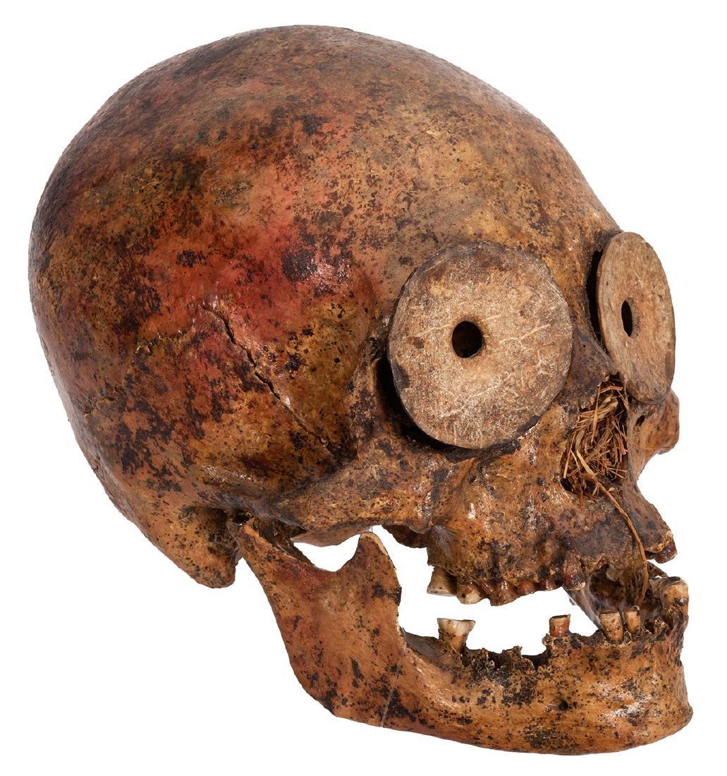 Pre-Columbian Human Skull.