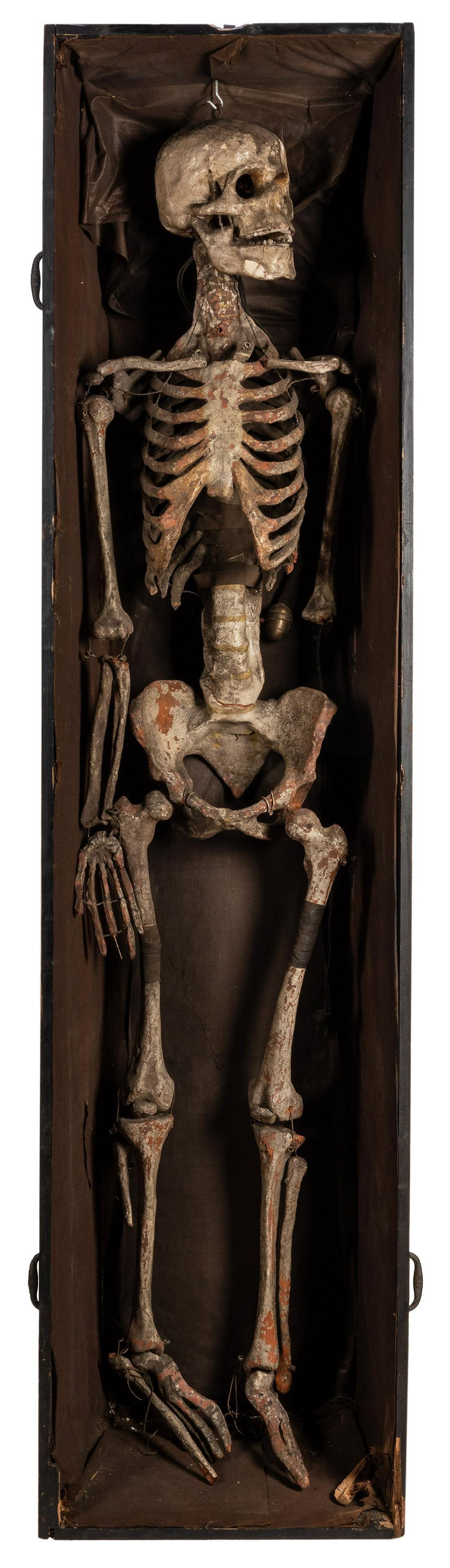 Fraternal Order Skeleton and Coffin Display.
